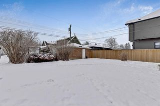 Photo 23: 635 19 Avenue NW in Calgary: Mount Pleasant Detached for sale : MLS®# A1063931