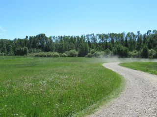Photo 50: 391043 Range Road 5-0 Road: Condor Agriculture for sale : MLS®# A1122824