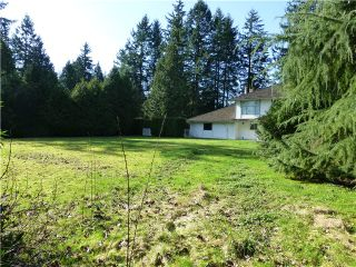 Photo 7: 2462 139TH ST in Surrey: Elgin Chantrell House for sale (South Surrey White Rock)  : MLS®# F1432900