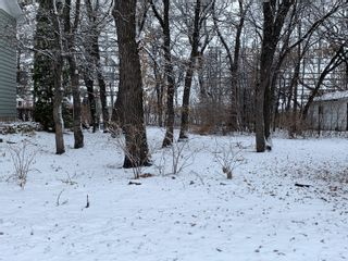 Photo 1: 0 14th Street NW in Portage la Prairie: Vacant Land for sale : MLS®# 202025147