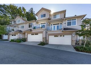 """Photo 1: 42 11860 RIVER Road in Surrey: Royal Heights Townhouse for sale in """"Cypress Ridge"""" (North Surrey)  : MLS®# R2216703"""