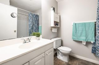 Photo 17: 6662 Temple Drive NE in Calgary: Temple Row/Townhouse for sale : MLS®# A1063811