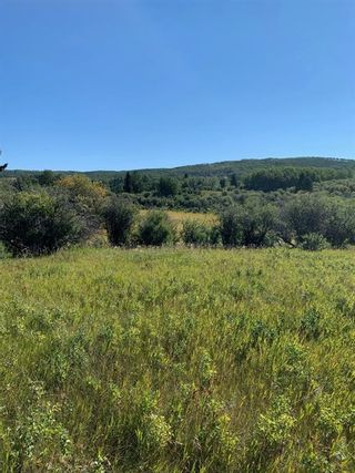 Photo 10: Highway 549 and 176 St W: Rural Foothills County Residential Land for sale : MLS®# A1141673