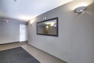 Photo 31: 8307 70 Panamount Drive NW in Calgary: Panorama Hills Apartment for sale : MLS®# A1087001