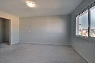 Photo 28: 8 Saddlecrest Gardens NE in Calgary: Saddle Ridge Detached for sale : MLS®# A1125888