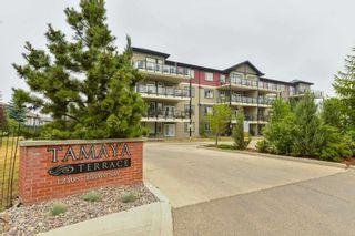 Photo 40: 215 12408 15 Avenue in Edmonton: Zone 55 Condo for sale : MLS®# E4255150