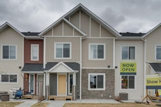 Photo 17: 1155 Channelside Drive SW: Airdrie Row/Townhouse for sale : MLS®# A1058815