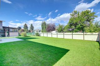 Photo 41: 216 Silver Springs Green NW in Calgary: Silver Springs Detached for sale : MLS®# A1147085
