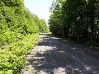 Photo 10: Meiklefield Road in Meiklefield: 108-Rural Pictou County Vacant Land for sale (Northern Region)  : MLS®# 202117504