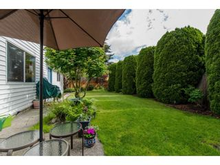 "Photo 20: 9578 212B Street in Langley: Walnut Grove House for sale in ""WALNUT GROVE"" : MLS®# R2080902"