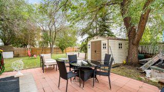 Photo 40: 31 WARWICK Road in Edmonton: Zone 27 House Half Duplex for sale : MLS®# E4259252