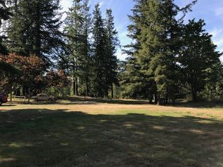 Photo 5: 136 232 Street in Langley: Campbell Valley House for sale : MLS®# R2222115