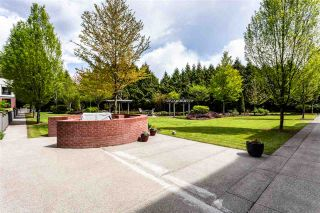 """Photo 23: 422 8880 202 Street in Langley: Walnut Grove Condo for sale in """"THE RESIDENCES AT VILLAGE SQUARE"""" : MLS®# R2534222"""