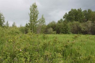 Photo 2: RR 35A Twp Rd 553: Rural Lac Ste. Anne County Rural Land/Vacant Lot for sale : MLS®# E4203889