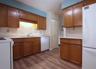 "Photo 7: 105 8725 ELM Drive in Chilliwack: Chilliwack E Young-Yale Condo for sale in ""ELMWOOD TERRACE"" : MLS®# R2464677"