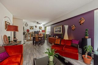 Photo 13: 101 7436 STAVE LAKE Street in Mission: Mission BC Condo for sale : MLS®# R2603469