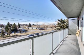 Photo 15: 411 333 Garry Crescent NE in Calgary: Greenview Apartment for sale : MLS®# A1088693