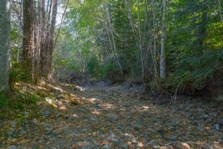 Photo 48: 3775 Mountain Rd in : ML Cobble Hill House for sale (Malahat & Area)  : MLS®# 886261