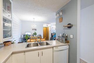 Photo 17: 103 44 ALPINE Place: St. Albert Condo for sale : MLS®# E4259012