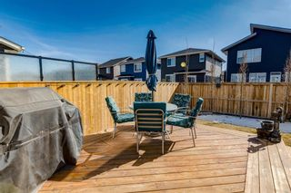 Photo 43: 625 Midtown Place SW: Airdrie Detached for sale : MLS®# A1082621