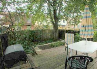 Photo 9: 97 Reginald Cres in MARKHAM: House (2-Storey) for sale : MLS®# N983609