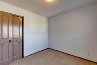 Photo 33: 359 New Brighton Place SE in Calgary: New Brighton Detached for sale : MLS®# A1131115