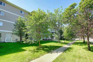 Photo 50: 302 8715 82 Avenue in Edmonton: Zone 17 Condo for sale : MLS®# E4248630