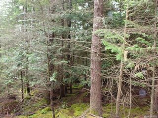 Photo 5: Lot 78 Sockeye Dr in : Isl Mudge Island Land for sale (Islands)  : MLS®# 869665