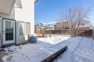 Photo 38: 85 Evansmeade Circle NW in Calgary: Evanston Detached for sale : MLS®# A1067552
