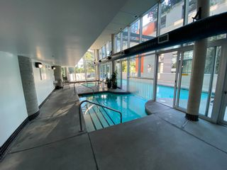 """Photo 8: 503 501 PACIFIC Street in Vancouver: Downtown VW Condo for sale in """"501 PACIFIC"""" (Vancouver West)  : MLS®# R2599166"""