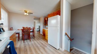 Photo 14: 17283 104 Street in Edmonton: Zone 27 House for sale : MLS®# E4253302