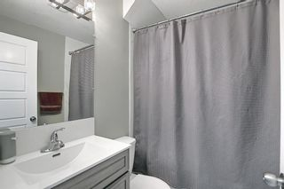 Photo 40: 26 Evanscrest Heights NW in Calgary: Evanston Detached for sale : MLS®# A1127719