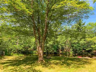 Photo 26: 66 Basil Whynot Road in Upper Northfield: 405-Lunenburg County Residential for sale (South Shore)  : MLS®# 202118031