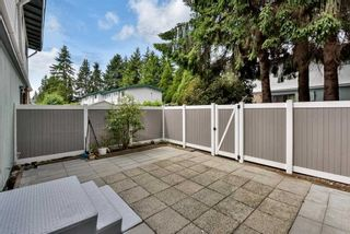 Photo 11: 78 10818 152ND STREET in Surrey: Guildford Townhouse for sale (North Surrey)  : MLS®# R2589468