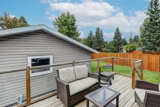 Photo 24: 4203 Dalhart Road NW in Calgary: Dalhousie Detached for sale : MLS®# A1143052