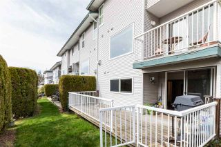"""Photo 36: 60 34332 MACLURE Road in Abbotsford: Central Abbotsford Townhouse for sale in """"IMMEL RIDGE"""" : MLS®# R2554947"""