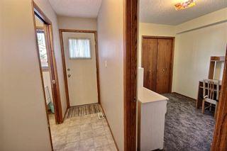 Photo 21: 147 MAYLIEWAN Close in Edmonton: Zone 28 House for sale : MLS®# E4254143