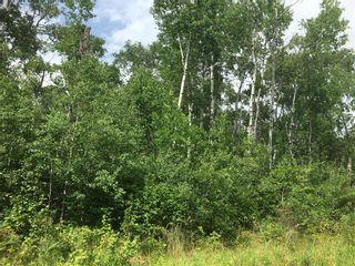 Photo 1: 24 Moon Shadow Road: Lake Manitoba Narrows Residential for sale (R19)  : MLS®# 202109658