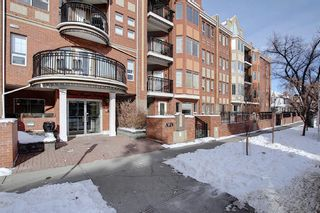 Photo 4: 218 838 19 Avenue SW in Calgary: Lower Mount Royal Apartment for sale : MLS®# A1070596