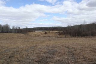 Photo 12: Twp 510 RR 33: Rural Leduc County Rural Land/Vacant Lot for sale : MLS®# E4239253