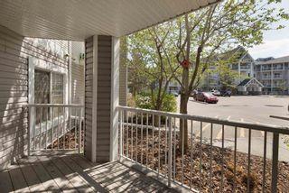 Photo 20: 112 4407 23 Street NW in Edmonton: Zone 30 Condo for sale : MLS®# E4245816