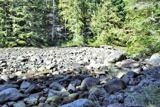 Photo 11: Lot 42 Sonora Island in : Isl Small Islands (Campbell River Area) Land for sale (Islands)  : MLS®# 885460