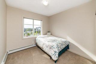 Photo 23: 413 507 ALBANY Way in Edmonton: Zone 27 Condo for sale : MLS®# E4264488