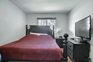 Photo 15: 150 Holly Street NW in Calgary: Highwood Detached for sale : MLS®# A1096682