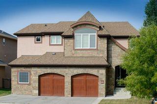 Main Photo: 173 ELGIN ESTATES Park SE in Calgary: McKenzie Towne Detached for sale : MLS®# A1073243