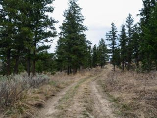Photo 10: 5511 BARNHARTVALE ROAD in Kamloops: Barnhartvale Lots/Acreage for sale : MLS®# 161226