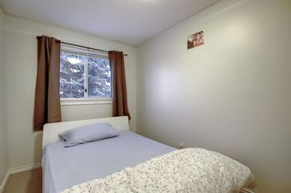Photo 21: 148 Martinbrook Road NE in Calgary: Martindale Detached for sale : MLS®# A1069504