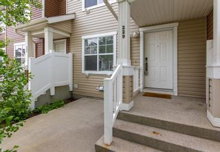 Photo 23: 229 Elgin Gardens SE in Calgary: McKenzie Towne Row/Townhouse for sale : MLS®# A1118825