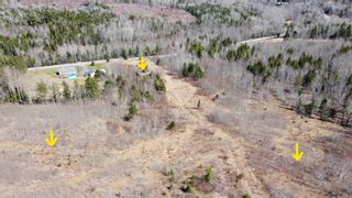 Photo 13: 8532 Trunk 4 Highway in Telford: 108-Rural Pictou County Vacant Land for sale (Northern Region)  : MLS®# 202108300