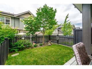 """Photo 19: 40 4967 220 Street in Langley: Murrayville Townhouse for sale in """"Winchester"""" : MLS®# R2393390"""
